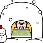 寒さ対策は窓が肝心 その対策法 カーテンの長さ 結露はどうする?