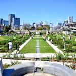 大阪の中之島イルミネーション、どこから見る?アクセス、最寄り駅は?