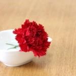 母の日のプレゼント、楽天でお花はまだ間に合う?