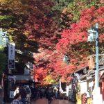 高尾山の紅葉行ってきた!混雑・渋滞、駐車場は?トイレの穴場、渋滞回避方法